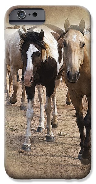 American Quarter Horse Herd iPhone Case by Betty LaRue