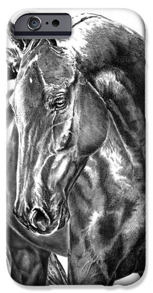 American Saddlebred Art iPhone Cases - American Saddlebred Horse iPhone Case by Elizabeth Sage