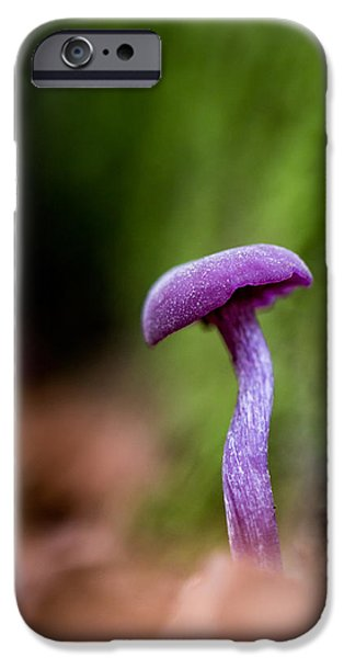 Mushrooms iPhone Cases - Amethyst Deciever  iPhone Case by Ian Hufton
