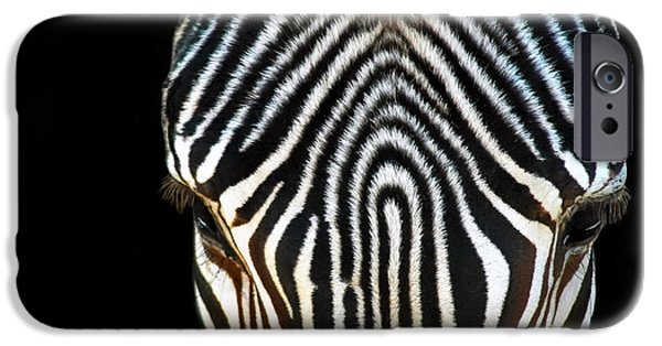 Fashion Designer Art iPhone Cases - Aminal Print iPhone Case by Dan Holm