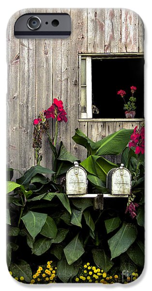 Barns Photographs iPhone Cases - Amish Barn iPhone Case by Diane Diederich