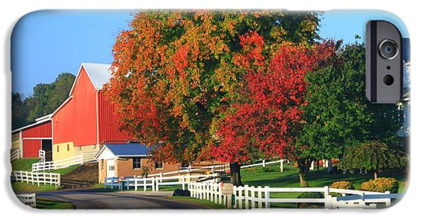 Colors Of Autumn iPhone Cases - Amish Barn In Autumn iPhone Case by Dan Sproul