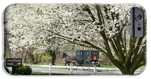 Horse And Buggy iPhone Cases - Amish Buggy Fowering Tree iPhone Case by David Arment