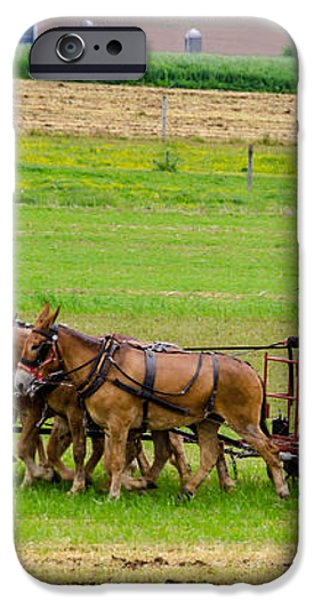 Amish Farmer iPhone Case by Guy Whiteley