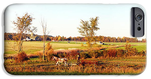 Amish iPhone Cases - Amish Farmer Plowing A Field, Usa iPhone Case by Panoramic Images