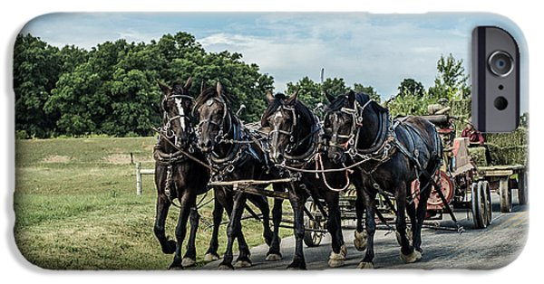 Amish Photographs iPhone Cases - Amish Hay Wagon iPhone Case by Mary Beth D