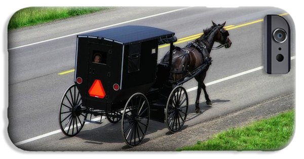 Horse And Buggy Photographs iPhone Cases - Amish Horse And Buggy In Ohio iPhone Case by Dan Sproul