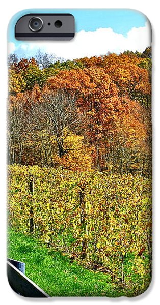 Amish Vinyard Two iPhone Case by Frozen in Time Fine Art Photography