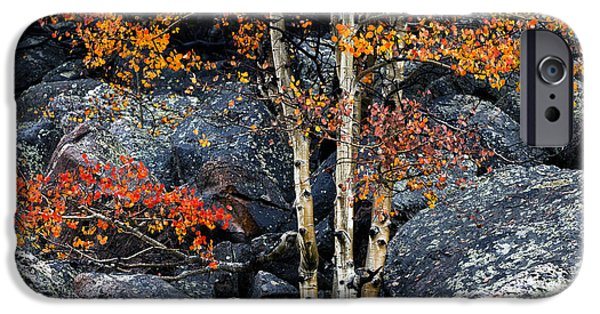 Autumn Season iPhone Cases - Among Boulders iPhone Case by Chad Dutson