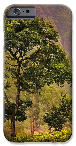 Among the Mountains and Tea Plantations. Nuwara Eliya. Sri Lanka iPhone Case by Jenny Rainbow
