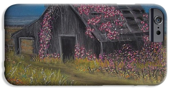 Barn Landscape Pastels iPhone Cases - Among the Roses iPhone Case by Julie  Grace