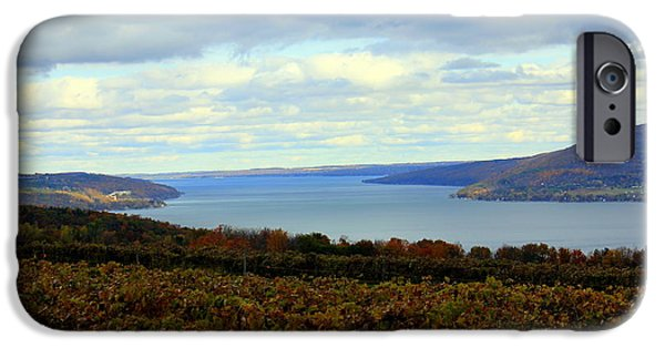 Canandaigua Lake iPhone Cases - Among  the Vines iPhone Case by Glenn Curtis