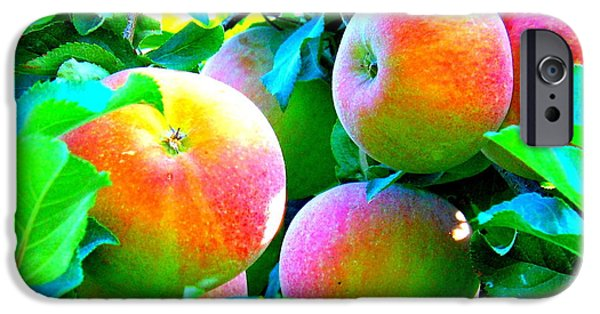 Windy Point Winery iPhone Cases - An Apple a Day iPhone Case by Kay Gilley
