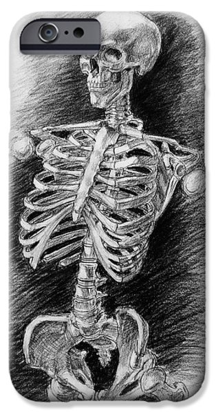 Skeleton Drawings iPhone Cases - Anatomy Study Mister Skeleton iPhone Case by Irina Sztukowski