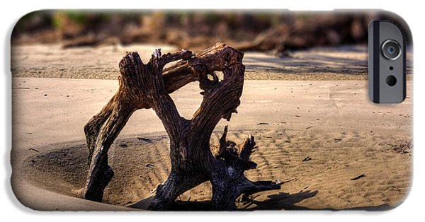 Chrystal iPhone Cases - Anchor Driftwood on Jekyll Island iPhone Case by Chrystal Mimbs