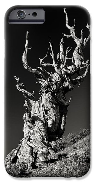 White Mountains iPhone Cases - Ancient iPhone Case by Joseph Smith