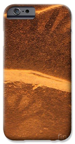Slickrock iPhone Cases - Ancient prints iPhone Case by Tonya Hance