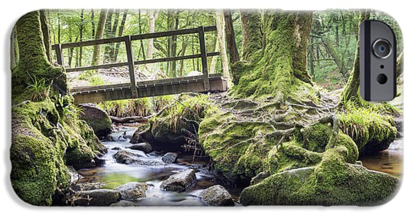 Tree Roots iPhone Cases - Ancient Woodland at Golitha Falls iPhone Case by Helen Hotson