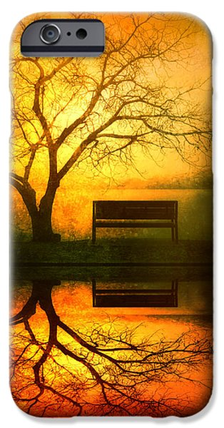 Reflecting Trees iPhone Cases - And I Will Wait For You Until the Sun Goes Down iPhone Case by Tara Turner