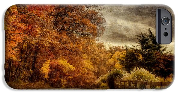 Autumn Road iPhone Cases - And The Seasons They Go Round and Round iPhone Case by Lois Bryan