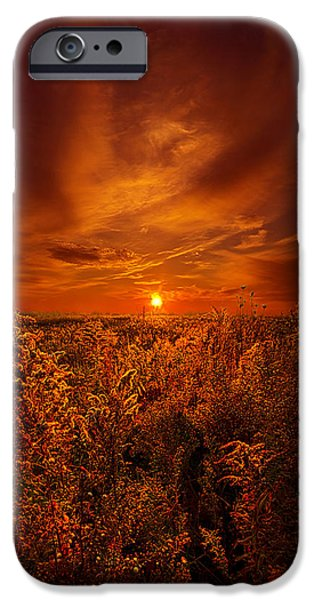 Rural iPhone Cases - And The Sun Rose Yet Again iPhone Case by Phil Koch
