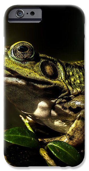 And This Frog Can Sing iPhone Case by Bob Orsillo