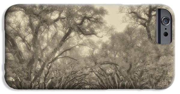 Oak Alley Plantation iPhone Cases - And Time Stood Still sepia iPhone Case by Steve Harrington