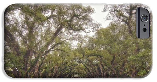 Oak Alley Plantation iPhone Cases - And Time Stood Still iPhone Case by Steve Harrington