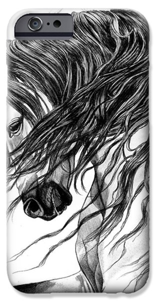 Drawing Of A Horse iPhone Cases - Andalusian Arabian Head iPhone Case by Cheryl Poland