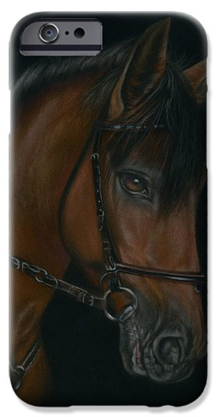 The Horse Pastels iPhone Cases - Andalusian Horse iPhone Case by Diane Sinclair