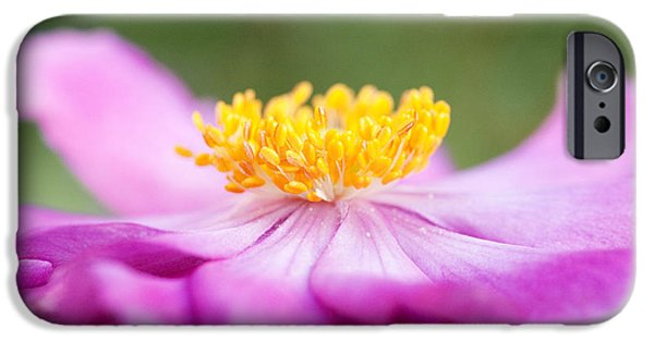 Nature Study Digital Art iPhone Cases - Anemone Flower Close Up iPhone Case by Natalie Kinnear