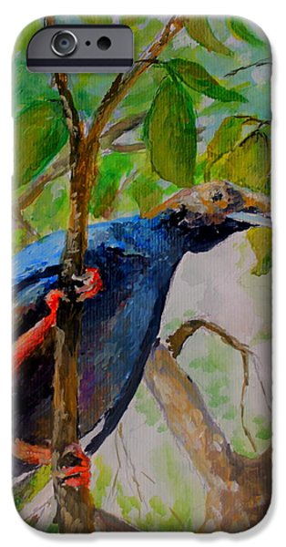 Mangrove Forest iPhone Cases - Angel Bird of  North Moluccas iPhone Case by Jason Sentuf