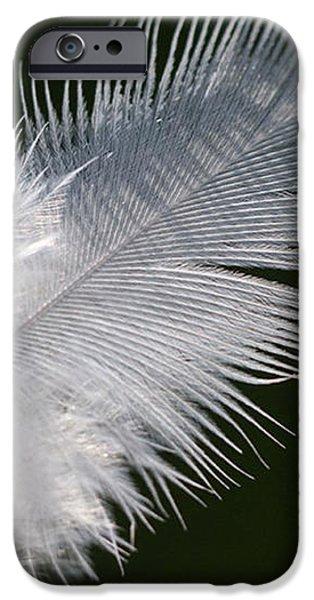 Angel feather iPhone Case by Carol Lynch