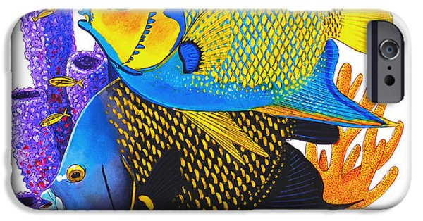 Islamorada iPhone Cases - Angel Fish iPhone Case by Carey Chen