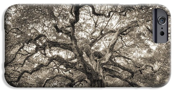 Live Oaks iPhone Cases - Angel Oak Tree of Life Sepia iPhone Case by Dustin K Ryan