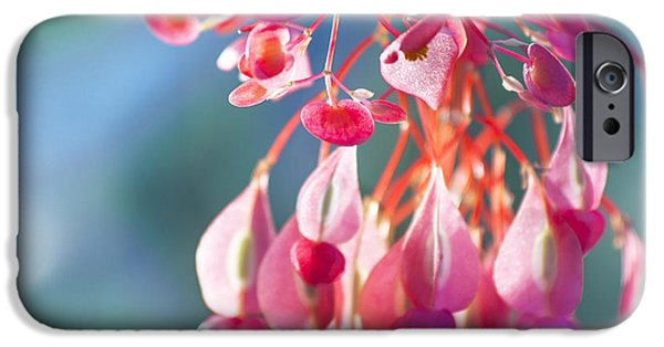 Shape Pyrography iPhone Cases - Angel Wing Begonia iPhone Case by Istvan  Kadar