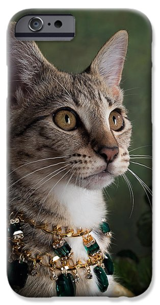 Savannah iPhone Cases - Angharad iPhone Case by Brittney Gobble
