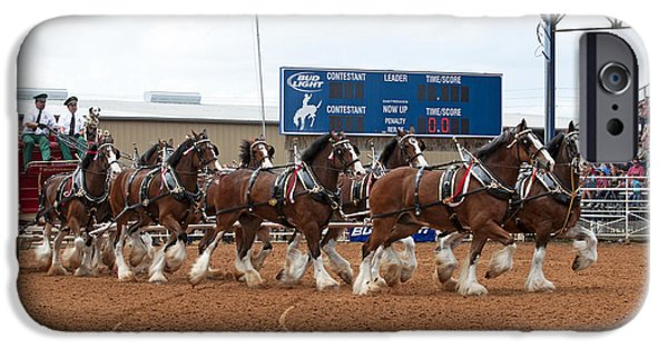 Dog Trots Photographs iPhone Cases - Anheuser Busch Clydesdales Pulling a Beer Wagon USA Rodeo iPhone Case by Sally Rockefeller