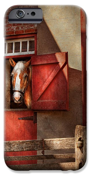 Animal - Horse - Calvins house  iPhone Case by Mike Savad