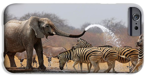 Recently Sold -  - Strange iPhone Cases - Animal humour iPhone Case by Johan Swanepoel
