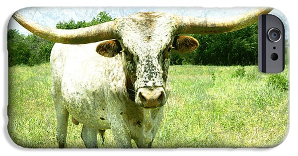 Ann Powell iPhone Cases - animals - cows -Longhorn in Summer Pasture iPhone Case by Ann Powell