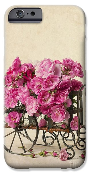 Wagon Photographs iPhone Cases - Antique Rose Cart iPhone Case by Edward Fielding