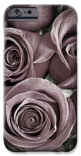 Rose iPhone Cases - Antique Roses iPhone Case by Edward Fielding