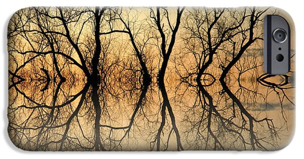Reflecting Trees iPhone Cases - Antique tree iPhone Case by Sharon Lisa Clarke