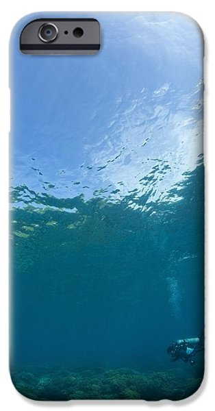 Free-diver iPhone Cases - Apo Island Marine Park, Philippines iPhone Case by Stuart Westmorland