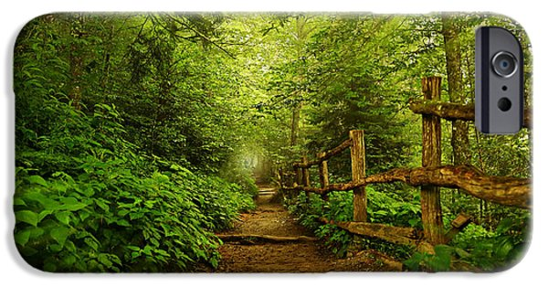 Pathway iPhone Cases - Appalachian Trail at Newfound Gap iPhone Case by Stephen Stookey