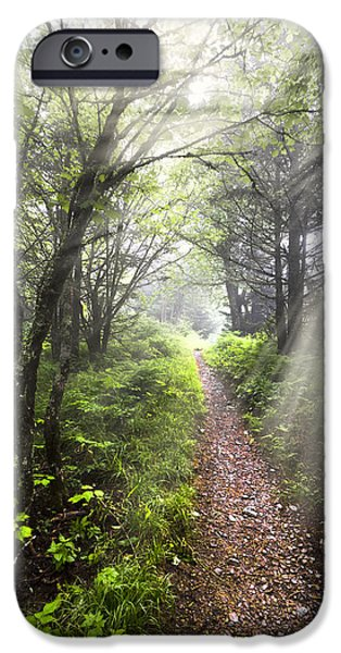 Nc iPhone Cases - Appalachian Trail iPhone Case by Debra and Dave Vanderlaan