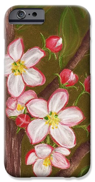 Bloom iPhone Cases - Apple Blossom iPhone Case by Anastasiya Malakhova