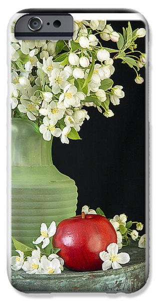 Apple Photographs iPhone Cases - Apple Blossoms Card iPhone Case by Edward Fielding