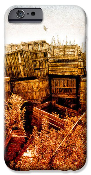 Apple Crates and Crows iPhone Case by Bob Orsillo